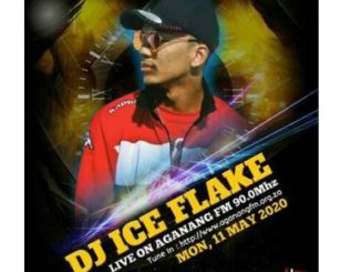 Dj Ice Flake mp3 download