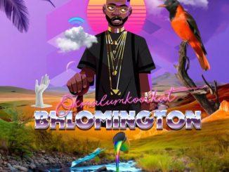 Okmalumkoolkat Bhlomington EP