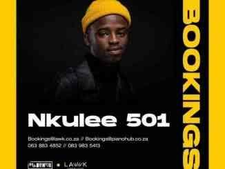 Nkulee 501 – Related (Main Mix) ft. Zan SA & Fanarito